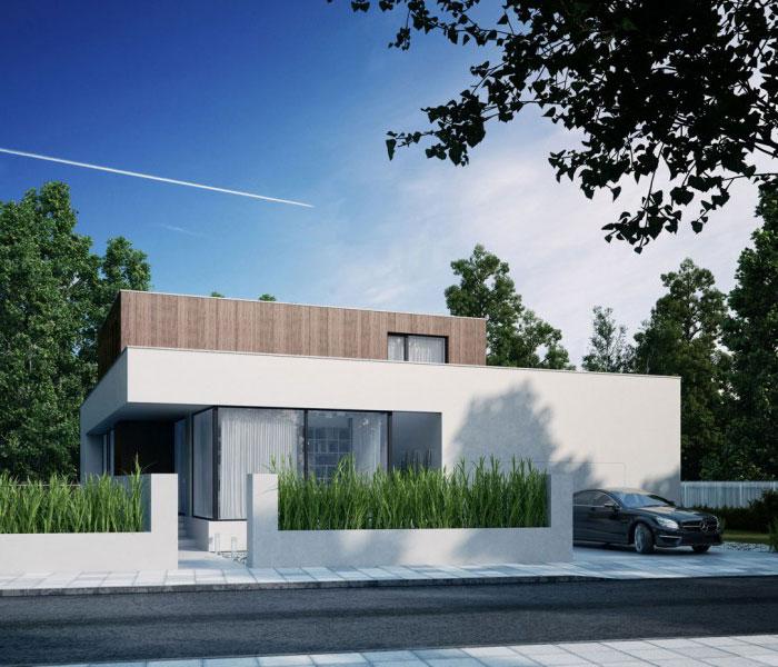 glass wood house1