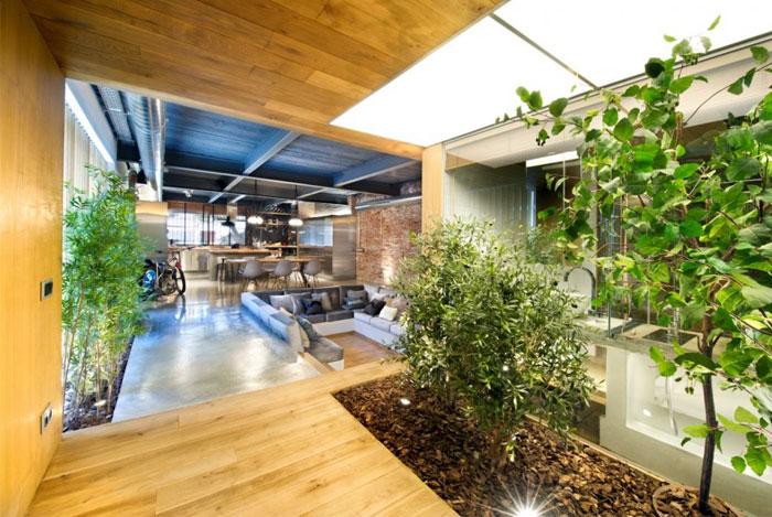 plant grows spacious windows
