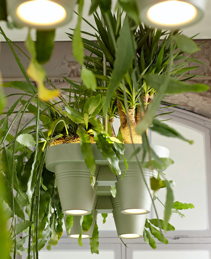 roderick vos lamp plant fixtures