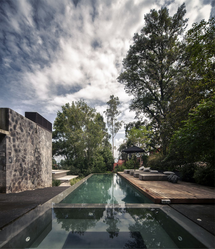 pool-area-clever-integration-vegetation-natural-components