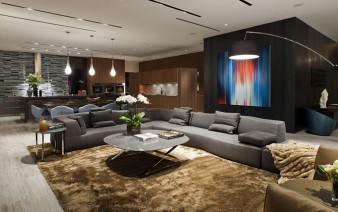 spectacular designer living room 338x212