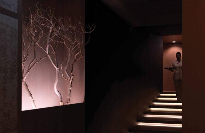 four seasons luxurios interior