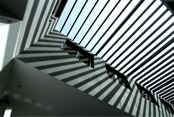 office interior created mole design 6