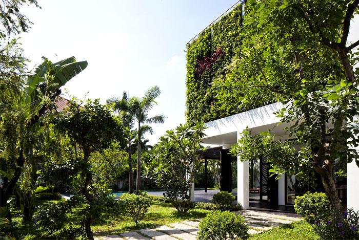 vivid greenery