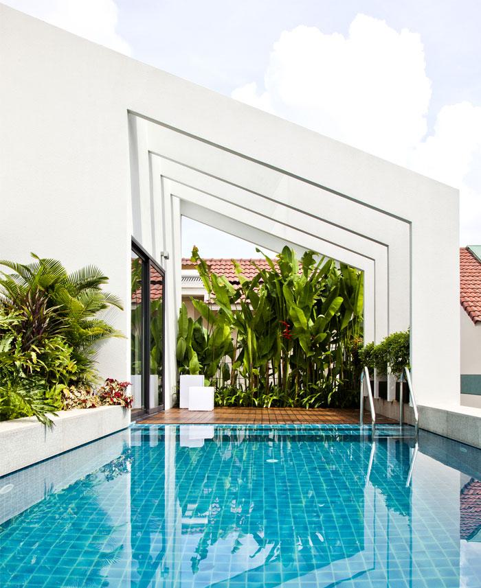 roof terrace greenery swimming pool