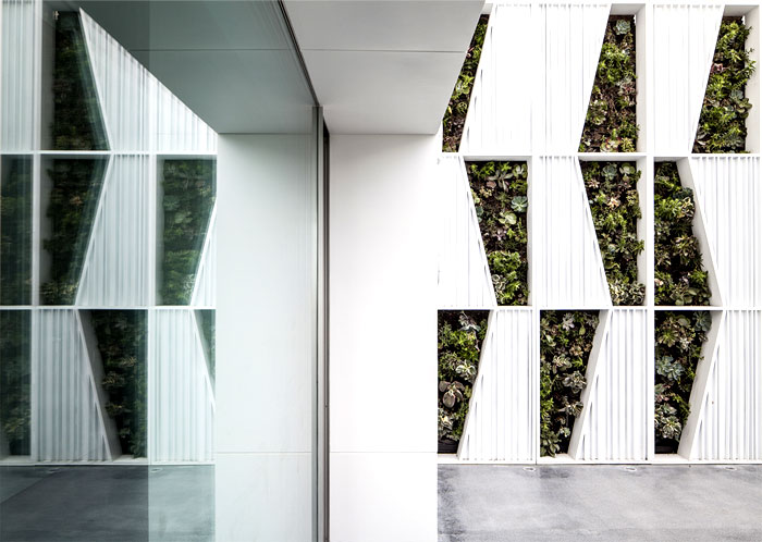eye catching feature artistic green wall