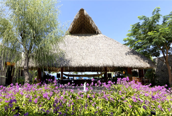 luxuriant-vegetation-surroundings-house-garden-exterior
