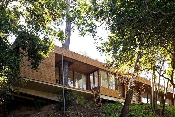contemporary pavilion forest