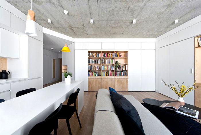 vilnius apartment project 1