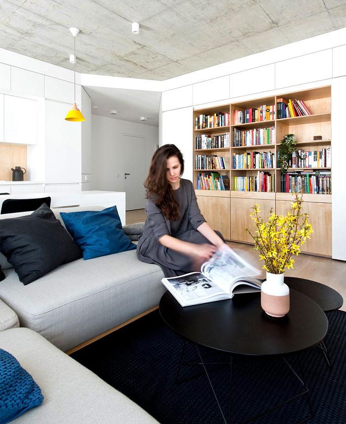 vilnius apartment project 3