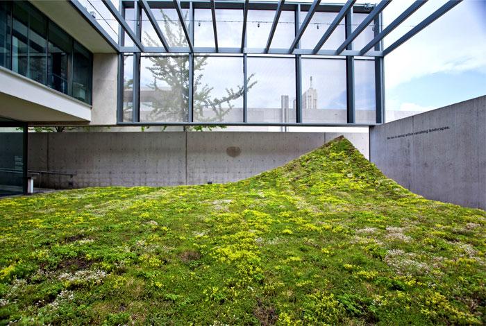 landscape architecture nomad studio 6