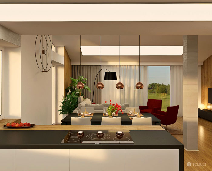 studio-tolicci-interior-design-1