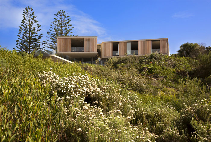 beachyhead saota architects 18