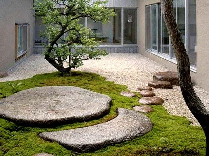 contemporary moss garden idea