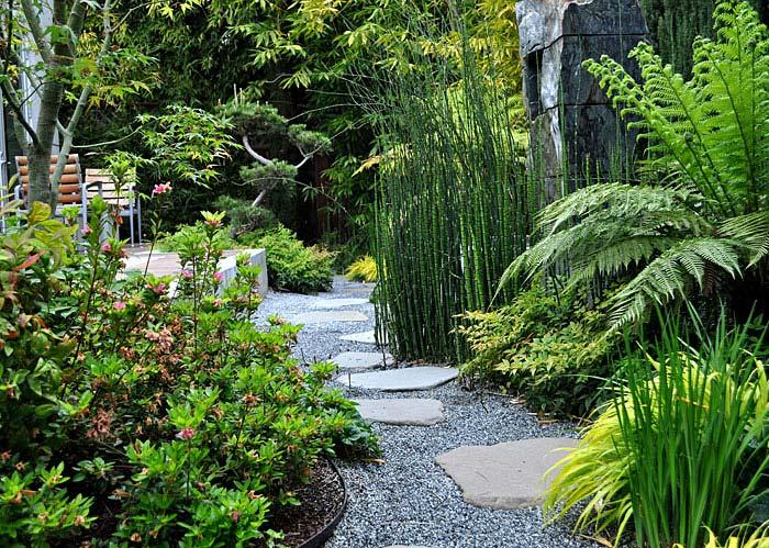 green bamboo garden idea asian backyard