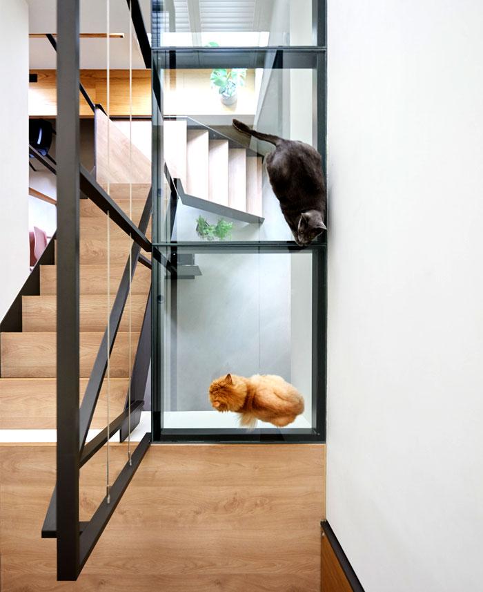 apartment parti design studio 21