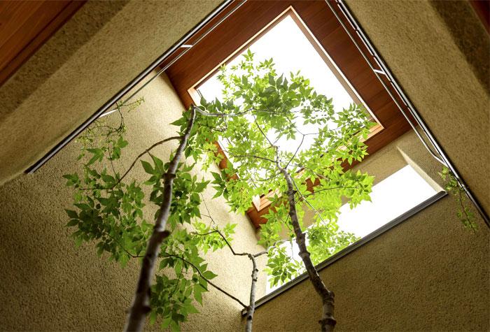 japanese house hearth architects 18