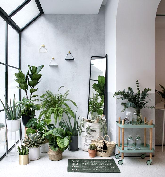 home renovation rigi design studio 24