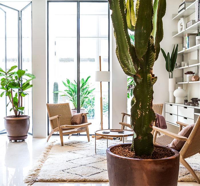 apartament barcelona ylab arquitectos 20