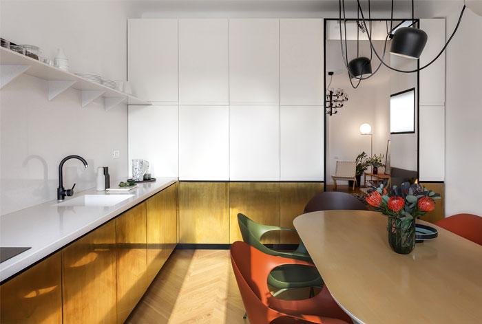 bogdan ciocodeica apartment design 12