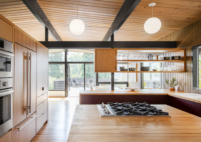 hillside midcentury shed architecture and design8