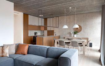 apartment design petreikiene 338x212