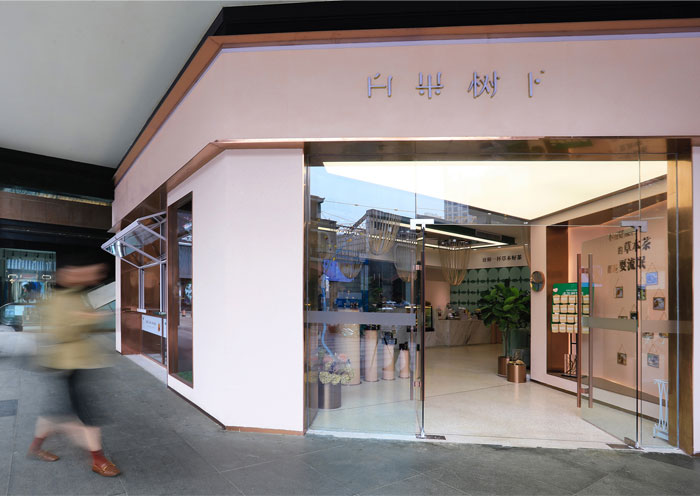 project traditional chinese medicine clinic 1