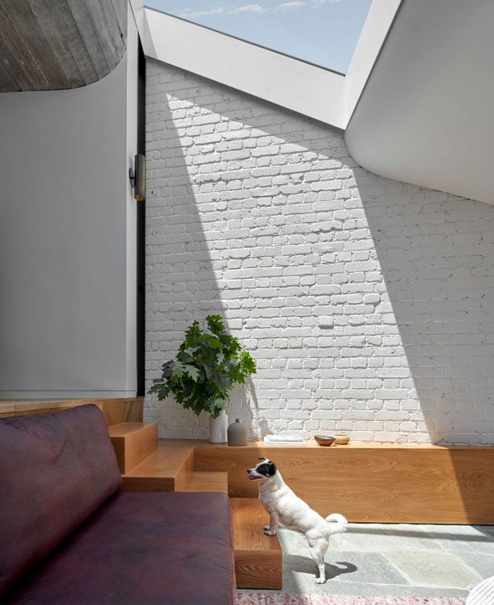 fitzroy terrace house taylor knights architects 8