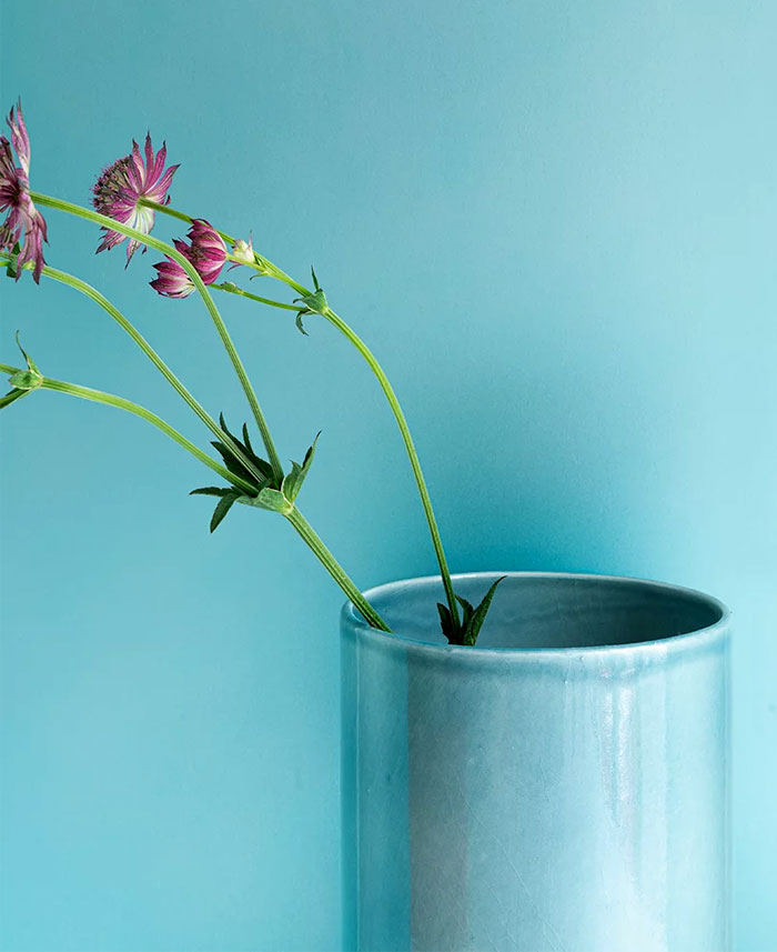 bouroullec fenetre vases henri matisse 5